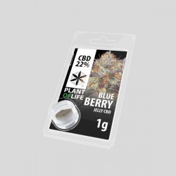 Blueberry jelly hash CBD solid 22%