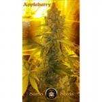 Appleberry | Sumo Seeds | 3 seeds