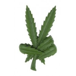 Leaf peace sign Magnet #