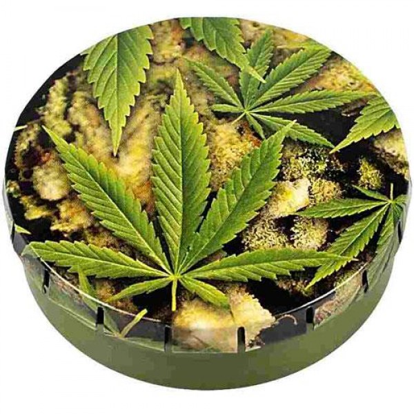 Click Clack box | Buds & leaves | Ø5,5cm